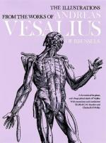Andreas Vesalius by