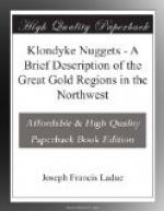 Klondyke Nuggets by Joseph Francis Ladue