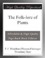 The Folk-lore of Plants by