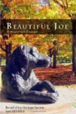 Beautiful Joe by Margaret Marshall Saunders