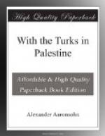 With the Turks in Palestine by
