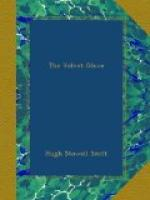 The Velvet Glove by Hugh Stowell Scott
