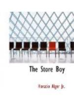 The Store Boy by Horatio Alger, Jr.