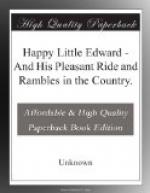 Happy Little Edward by