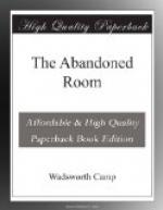 The Abandoned Room by