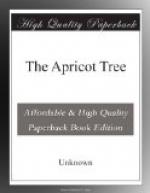The Apricot Tree by