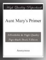 Aunt Mary's Primer by