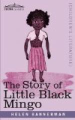 The Story of Little Black Mingo by Helen Bannerman