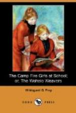 The Camp Fire Girls at School by