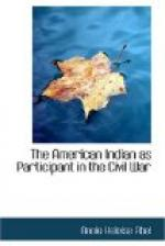 The American Indian as Participant in the Civil War by