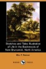 Sketches and Tales Illustrative of Life in the Backwoods of New Brunswick by