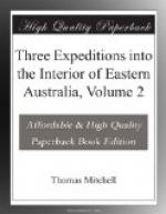 Three Expeditions into the Interior of Eastern Australia, Volume 2 by Thomas Mitchell