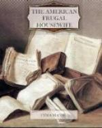 The American Frugal Housewife by Lydia Child