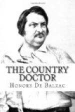 The Country Doctor by Honoré de Balzac