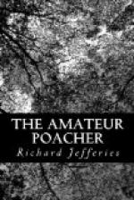 The Amateur Poacher by Richard Jefferies