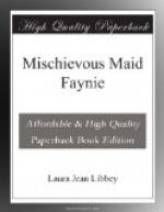 Mischievous Maid Faynie by Laura Jean Libbey