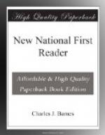 New National First Reader by