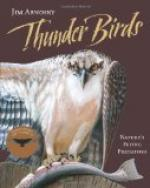 The Thunder Bird by