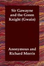 Sir Gawayne and the Green Knight by