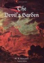 The Devil's Garden by W. B. Maxwell