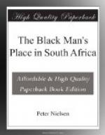 The Black Man's Place in South Africa by