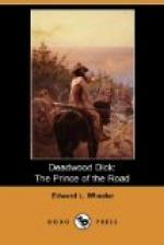 Deadwood Dick, The Prince of the Road by
