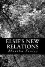 Elsie's New Relations by