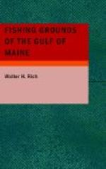 Fishing Grounds of the Gulf of Maine by