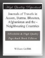 Journals of Travels in Assam, Burma, Bhootan, Afghanistan and the by