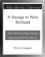 A Voyage to New Holland by William Dampier