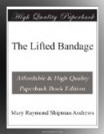 The Lifted Bandage by