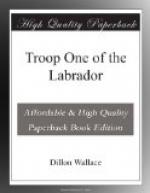 Troop One of the Labrador by