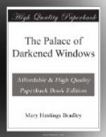 The Palace of Darkened Windows by