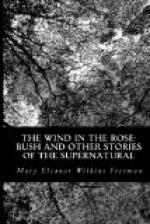 The Wind in the rose-bush and other stories of the supernatural by Mary Eleanor Wilkins Freeman