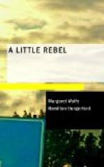 A Little Rebel by Margaret Wolfe Hungerford