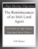 The Reminiscences of an Irish Land Agent by