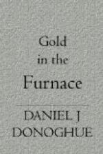 The Furnace of Gold by