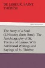The Story of a Soul (L'Histoire d'une Âme): The Autobiography of St. Thérèse of Lisieux by Thérèse de Lisieux