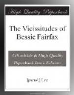 The Vicissitudes of Bessie Fairfax by