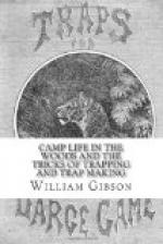 Camp Life in the Woods and the Tricks of Trapping and Trap Making by William Hamilton Gibson