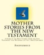 Mother Stories from the New Testament by