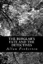 The Burglar's Fate And The Detectives by Allan Pinkerton