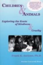 Animal Children by