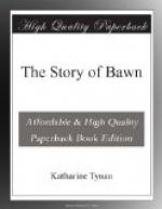 The Story of Bawn by Katharine Tynan