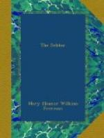The Debtor by Mary Eleanor Wilkins Freeman