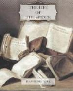 The Life of the Spider by Jean Henri Fabre
