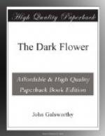 The Dark Flower by John Galsworthy