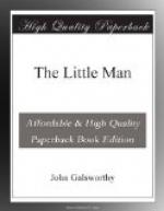 The Little Man by John Galsworthy