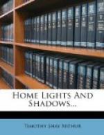 Home Lights and Shadows by Timothy Shay Arthur
