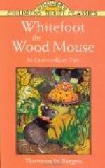 Whitefoot the Wood Mouse by Thornton Burgess